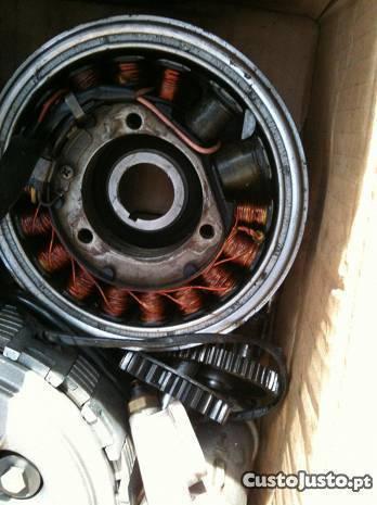 Mecânica motor rotax