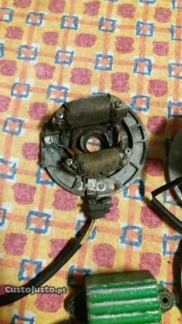 Rotore parte electrica e bobine dt